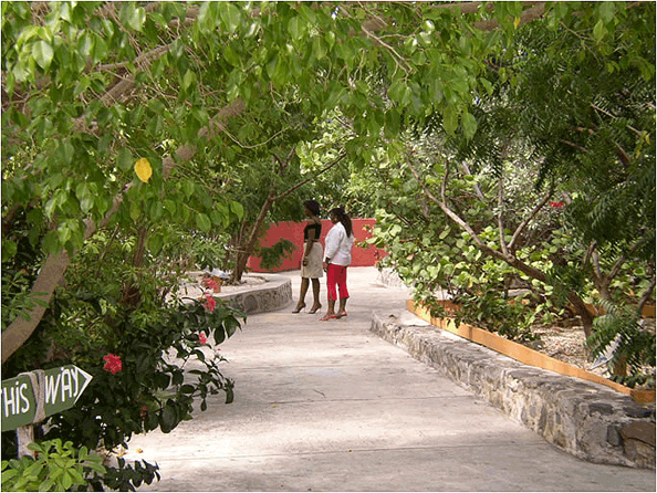 St Maarten Zoo's walkways and gardens.
