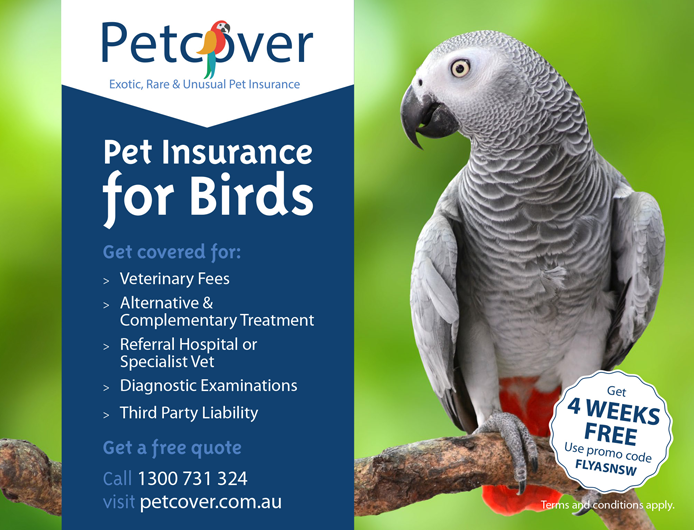 Petcover | Pet Insurance for Birds