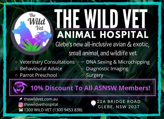 The Wild Vet Hospital - Veterinary Consultations, Behavioural Advice, Parrot Preschool, DNA Sexing and Microchipping, Diagnostic Imaging, Surgery
