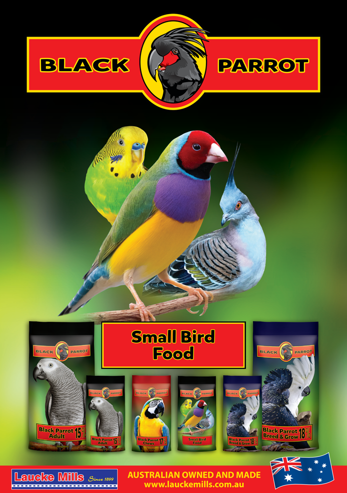 Black Parrot | Small Bird Food (Laucke Mills | Australian Owned and Made)