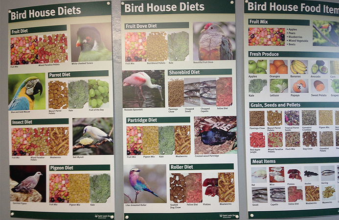 St Louis Zoo Bird House Diets